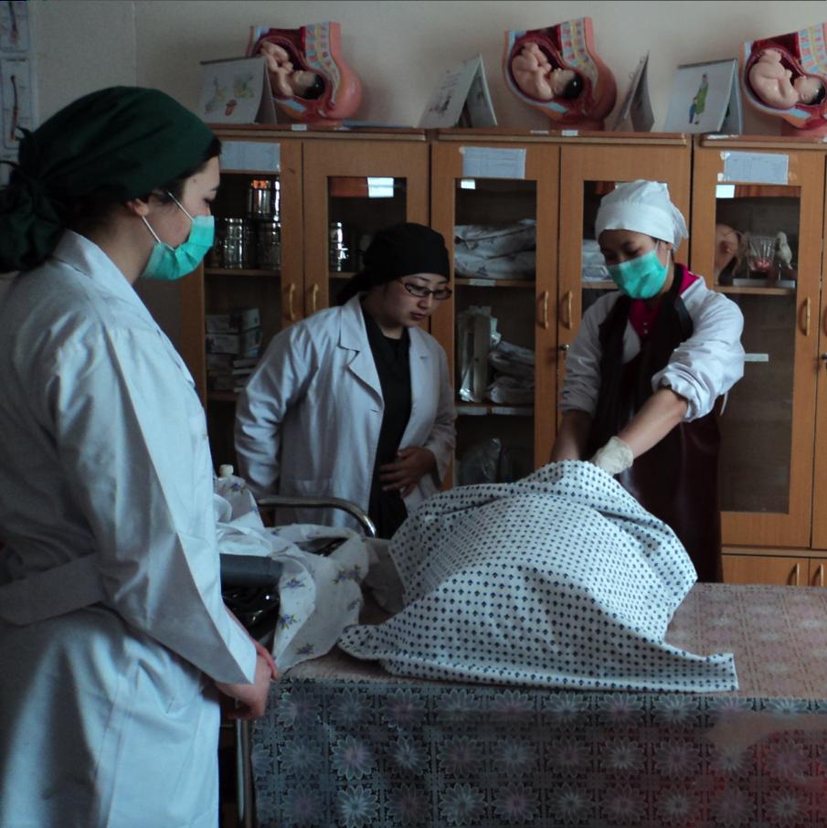 Aperçu du Taux de Mortalité Maternelle en Afghanistan